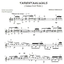 Tarentaalwals Notation for Classical Guitar